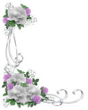Rose di bianco del bordo dell'invito di cerimonia nuziale Immagine Stock