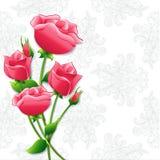 Rose di carta rosa del mazzo sul fondo delicato dell'ornamento Immagini Stock
