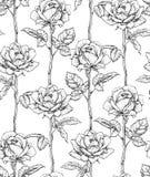 Rose di fioritura disegnate a mano Reticolo senza giunte con le rose Illustrazione di vettore immagini stock