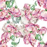 Rose di rosa del mazzo dell'acquerello Reticolo senza giunte floreale Immagine Stock Libera da Diritti