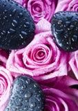 Rose di zen fotografia stock