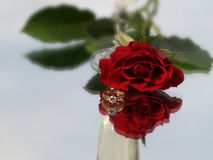 Rose and diamond ring Royalty Free Stock Image