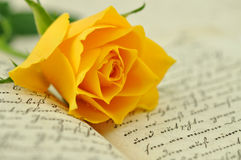 Rose on Diary Royalty Free Stock Images