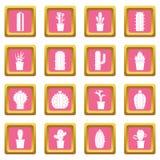 Rose différent d'icônes de cactus Image stock