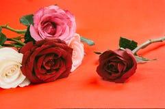 Rose differenti di colore, stile d'annata Fotografie Stock Libere da Diritti
