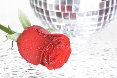 Rose and disco ball Royalty Free Stock Photography