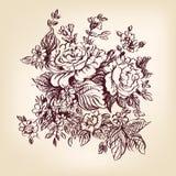 Rose disegnate a mano Fotografia Stock Libera da Diritti