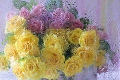 Rose dopo vetro bagnato Fotografia Stock Libera da Diritti