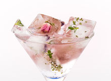Rose drink Stock Images