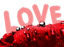 Rose with drops and love message Royalty Free Stock Photo