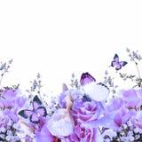 Rose e farfalla Fotografie Stock