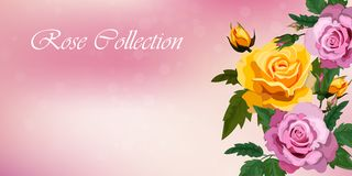 Rose e farfalle Fotografia Stock