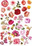 Rose e l'altra accumulazione dei fiori di colore rosso Immagini Stock Libere da Diritti