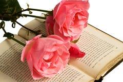 Rose e libro isolati Immagine Stock