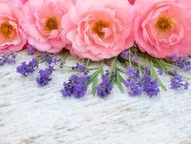 Rose e mazzo aperti ricci rosa della lavanda della Provenza Fotografie Stock