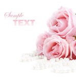 Rose e perle fotografia stock