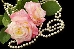 Rose e perle dentellare Fotografie Stock Libere da Diritti