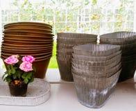 Rose e retro vasi da fiori del metallo di stile Immagine Stock