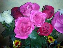 Rose e tulipani rosa fotografie stock