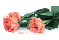 Rose ed anelli di cerimonia nuziale Immagine Stock