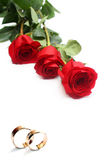 Rose ed anelli di cerimonia nuziale rossi Immagine Stock Libera da Diritti