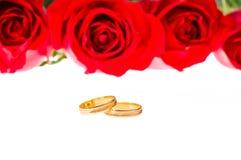 Rose ed anelli di cerimonia nuziale rossi sopra bianco Fotografie Stock Libere da Diritti