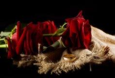 Rose ed anello Fotografie Stock