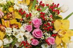 Rose ed orchidee Fotografia Stock Libera da Diritti