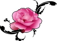 ROSE EMBELLISHMENT Royalty Free Stock Images