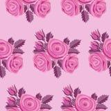 Rose Embroidery Seamless Pattern rosa Fotografia Stock Libera da Diritti