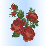 Rose embroidery of Ukrainian embroidery Royalty Free Stock Images