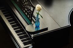 Rose en el florero en el piano de cola fotografía de archivo