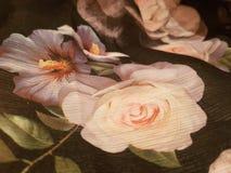 Rose en el paño Imágenes de archivo libres de regalías