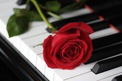 Rose en el piano Foto de archivo libre de regalías