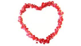 Rose en forme de coeur Photo stock