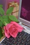 Rose en la computadora portátil Imagen de archivo