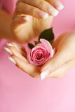 Rose en manos Foto de archivo libre de regalías