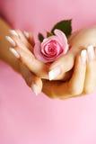 Rose en manos Fotografía de archivo libre de regalías