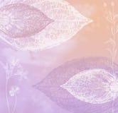Rose en pastel et fond de lilas Image stock