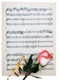 Rose en un papel musical Imagen de archivo libre de regalías