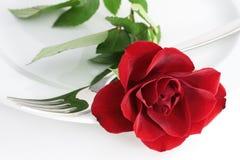 Rose en una placa Fotos de archivo libres de regalías