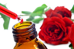 Rose essence Stock Photos