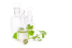Rose essence and rosebuds - spa arrangement isolated. Royalty Free Stock Photos