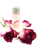 Rose essential Royalty Free Stock Photo