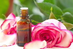 Rose essential aroma oil Royalty Free Stock Photo