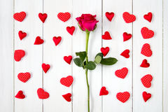 Rose et beaucoup de coeurs décoratifs Photo stock