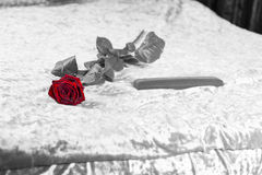 Rose et cadeau romantiques de rouge sur un lit Photographie stock