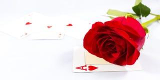 Rose et carte Photos libres de droits
