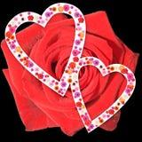 Rose et cerf Photographie stock libre de droits