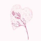Rose et coeur Photo stock